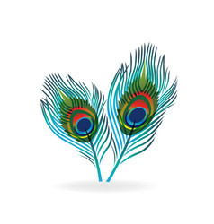 abstract bird feather vector image