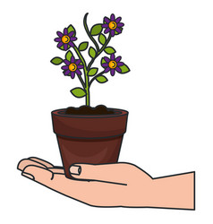 hand with flower in pot icon vector image