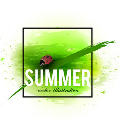 beautiful background with green grass and ladybug vector image