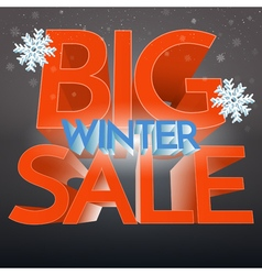 Big Winter Sale With Snowflake Banner Promo vector image