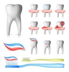 dental set vector image