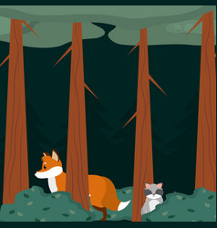 Fox and raccoon at forest vector