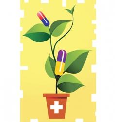 Medicinal plant vector