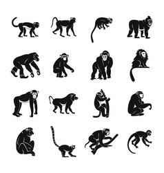 monkey types icons set simple style vector image
