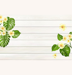 tropical template for your design plumeria leaves vector image