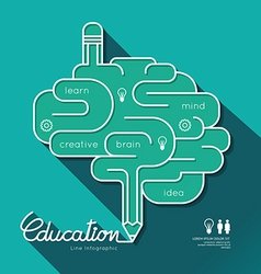 Education Infographic Flat linear Education Outlin vector image vector image