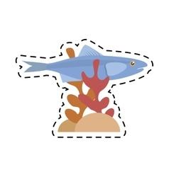 sardine sea food sealife coral vector image