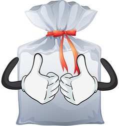A pouch bag vector image