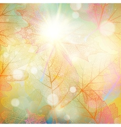 Beautiful autumn background with sun EPS 10 vector