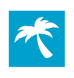 blue square frame with palm tree icon vector image vector image