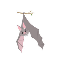 funny bat hanging upside down on a branch wrapped vector image