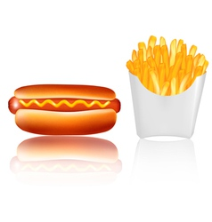 Hotdogr and french fries vector