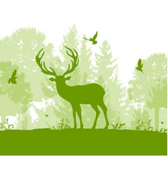 nature landscape with deer vector image