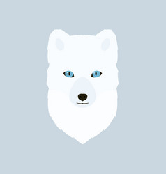 Portrait of the arctic fox vector