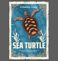 Sea turtle in ocean coral reefs vector