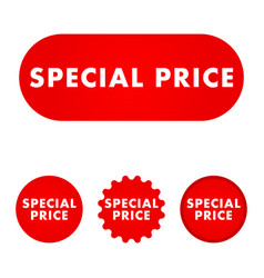 special price button vector image