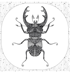 Coloring page of Balck Bug zentangle vector image