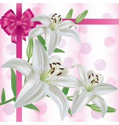 Greeting or invitation card with flower lily vector image vector image