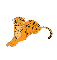 a tiger that lies drawing vector image