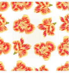 Seamless texture lily alstroemeria closeup vector