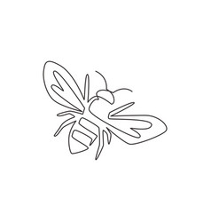 single continuous line drawing decorative bee vector image