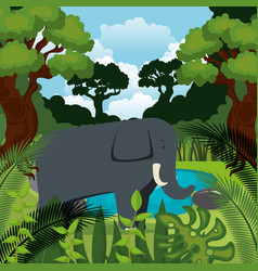 wild elephant in the jungle scene vector image