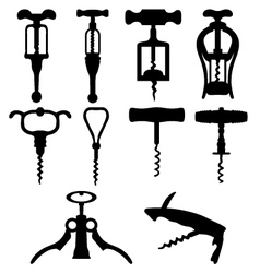 corkscrew vector image vector image