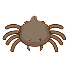 Cute spider on white background vector