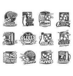 olives organic farm products engraved icons set vector image