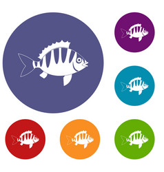 Perch icons set vector