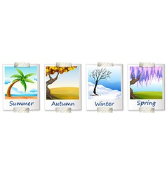 Seasons artwork vector
