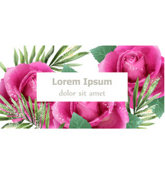 spring roses watercolor card beautiful floral vector image