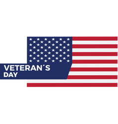 veteran day background vector image