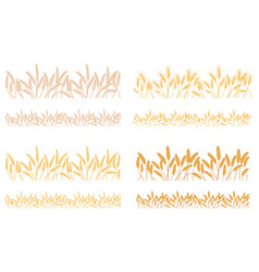 strips waving ears of cereals plants vector image vector image