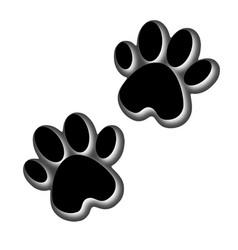 3d animals footprint footprint dog or cat in vector image