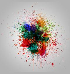 colorful splash effect vector image