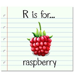 Flashcard letter R is for raspberry vector image