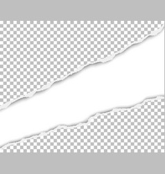 ripped long hole in sheet of transparent paper vector image