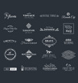 collection of nice template vector image vector image