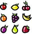 Colorful Fruit Icons vector image vector image