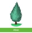 Fir tree cartoon icon vector image vector image