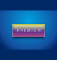 premium rainbow color label with white frame on vector image