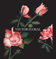 rose flowers leaves watercolor realistic print vector image