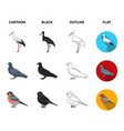 woodpecker stork and others birds set collection vector image vector image