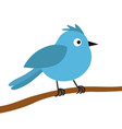blue bird on tree branch happy valentines day vector image