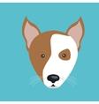 cute dog design vector image