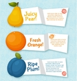 Fruits banners set Colorful template for cooking vector image vector image