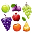 Fruits Icons Set vector image vector image