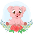little cute pig sitting with flowers background vector image vector image
