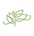 nature spa logo abstract leaf design icon vector image